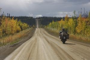 Herbstfarben, südlich des Polarkreises