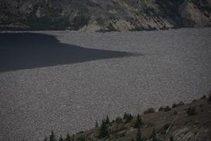 Der Spirit-Lake mit Baumlaichen der Eruption von 1980