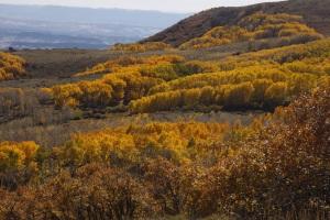 Herbstimpressionen am Highway 12